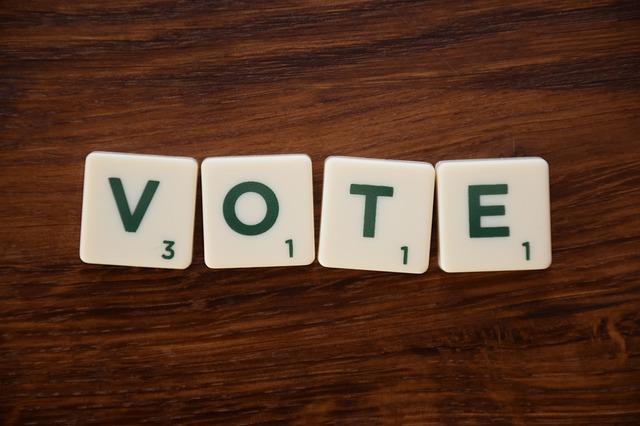 Pour qui voterait le maire sortant aux sénatoriales ?